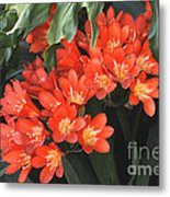 Red Blossoms At Lax Metal Print by Deborah Smolinske
