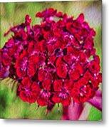 Red Carnations Metal Print by Omaste Witkowski