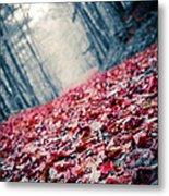 Red Carpet Metal Print by Edward Fielding