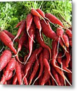 Red Carrots Metal Print by Charlette Miller