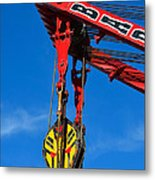 Red Crane - Photography By William Patrick And Sharon Cummings Metal Print by Sharon Cummings