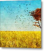 Red Maple Metal Print by Bob Orsillo