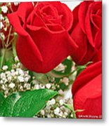 Red Roses With Baby's Breath Metal Print by Ann Murphy
