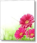 Red Spring Flowers Metal Print by Boon Mee