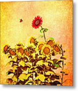 Red Sunflower Metal Print by Bob Orsillo