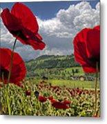 Red White And Blue Metal Print by Debra and Dave Vanderlaan