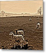 Redeemed By The Lamb Metal Print by Mindy Newman