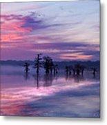 Reelfoot Lake Sunrise Metal Print by J Larry Walker