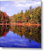 Reflected Autumn Lake Metal Print by William Carroll