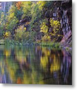 Reflected Fall Metal Print by Peter Coskun