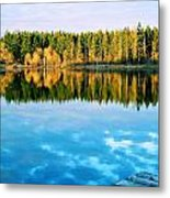 Reflections Metal Print by Alicia Cozort