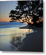 Reflections Of One Metal Print by Mike  Dawson