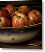 Remembering Autumn Metal Print by Amy Weiss