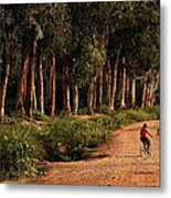 Returning Home Metal Print by Mary Jo Allen