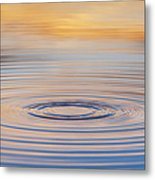 Ripples On A Still Pond Metal Print by Tim Gainey