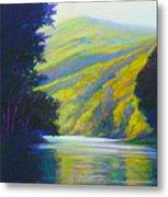 River Bend Metal Print by Ed Chesnovitch
