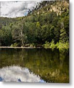 River Reflections I Metal Print by Marco Oliveira