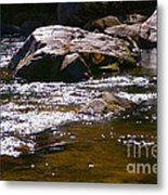River Reflections Metal Print by JW Hanley