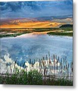 Road To Lieutenant Island Metal Print by Bill Wakeley