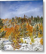 Rocky Mountain Autumn Storm Metal Print by James BO  Insogna
