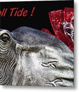 Roll Tide - 14 Time National Champions Metal Print by Kathy Clark