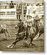 Roping Metal Print by Caitlyn  Grasso