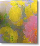 Rose 185 Metal Print by Pamela Cooper
