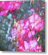 Rose 188 Metal Print by Pamela Cooper
