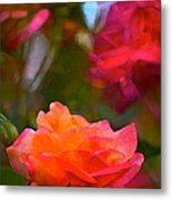 Rose 191 Metal Print by Pamela Cooper