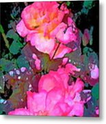 Rose 193 Metal Print by Pamela Cooper