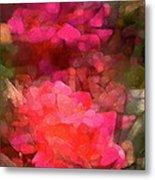 Rose 198 Metal Print by Pamela Cooper