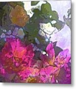 Rose 206 Metal Print by Pamela Cooper
