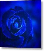 Rose In Blue Metal Print by Sandy Keeton