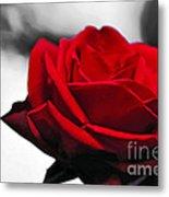 Rosey Red Metal Print by Kaye Menner