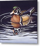 Royal Reflections Metal Print by Richard De Wolfe