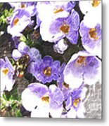 Rustic Planter Box Metal Print by Beverly Guilliams