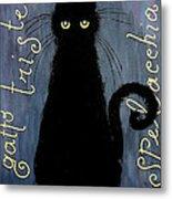 Sad And Ruffled Cat Metal Print by Donatella Muggianu
