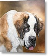 Saint Bernie Metal Print by Carol Cavalaris