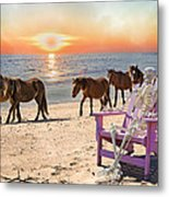 Sam Watches Over The Harem  Metal Print by Betsy C Knapp