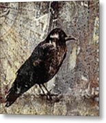Same Crow Different Day Metal Print by Carol Leigh