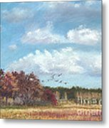 Sandhill Cranes At Crex With Birch  Metal Print by Jymme Golden