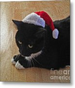Santa Kitty Metal Print by Cheryl Young