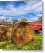 Scarecrow's Dream Metal Print by Debra and Dave Vanderlaan