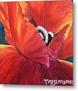Scarlet Poppy Metal Print by Tanja Ware