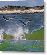 Scouting For A Catch Metal Print by Betsy Knapp