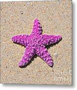 Sea Star - Pink Metal Print by Al Powell Photography USA