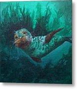 Seal Metal Print by Kathleen Kelly Thompson