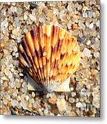 Seashell On Sandy Beach Metal Print by Carol Groenen