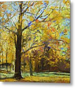 Shades Of Autumn Metal Print by Michael Creese