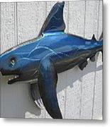 Shark Blue Bull Shark Metal Print by Robert Blackwell